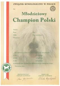 PKR_VI-17648-MŁCHPL-page-001